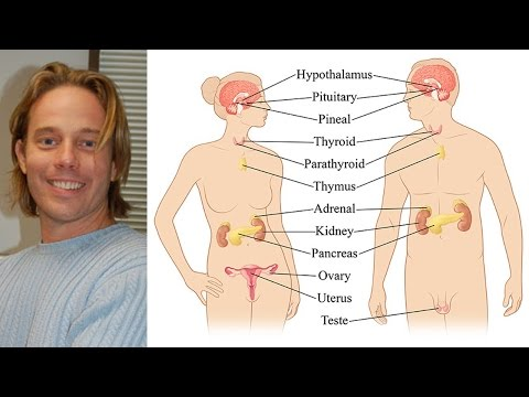 Dr. Edward Group on hormones & hormone disrupting chemicals that can cause disease