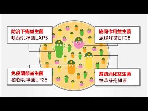 芯來旺-預混用益生菌-豬隻田間試驗