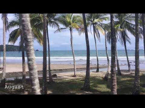 Costa Rica - A Year In 2 Minutes And 40 Seconds