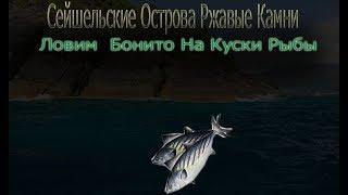 Русская Рыбалка 3.99 Сейшельские острова Бж