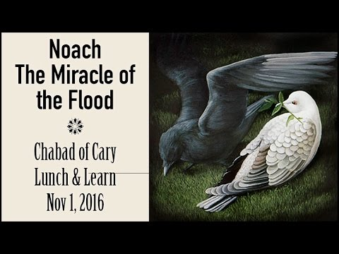 Noach & The Miracle of the Flood