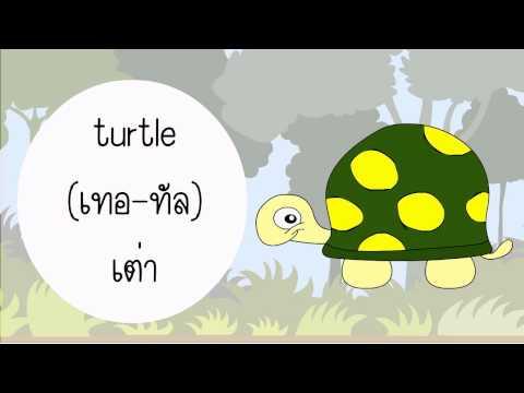 """คำศัพท์สัตว์ภาษาอังกฤษ """"Vocabulary Animal"""""""