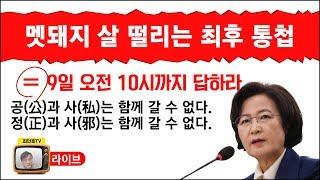멧돼지 동공 지진 ... 살 떨리는 추장관의 최후 통첩