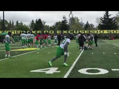 Watch: Sights and sounds from the Oregon Ducks