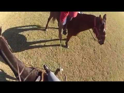 Polo Lessons 101 with Sidro Olivas