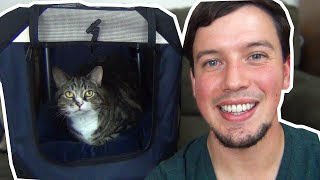 The Best Cat Carrier on Amazon!  😻  PetLuv Cat Carrier Review