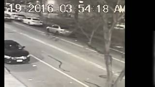 East New York Hit and Run
