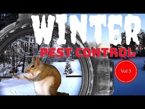 Winter Pest Control - Vol 3 - EDgun Leshiy, Leyla, R5M and ATN X Sight 4K Pro