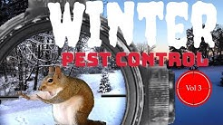 Winter Pest Control - Vol 3 - EDgun Leshiy, Leyla, R5M and ATN X Sight 4K Pro