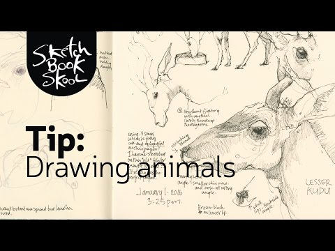 7 free tips on drawing animals