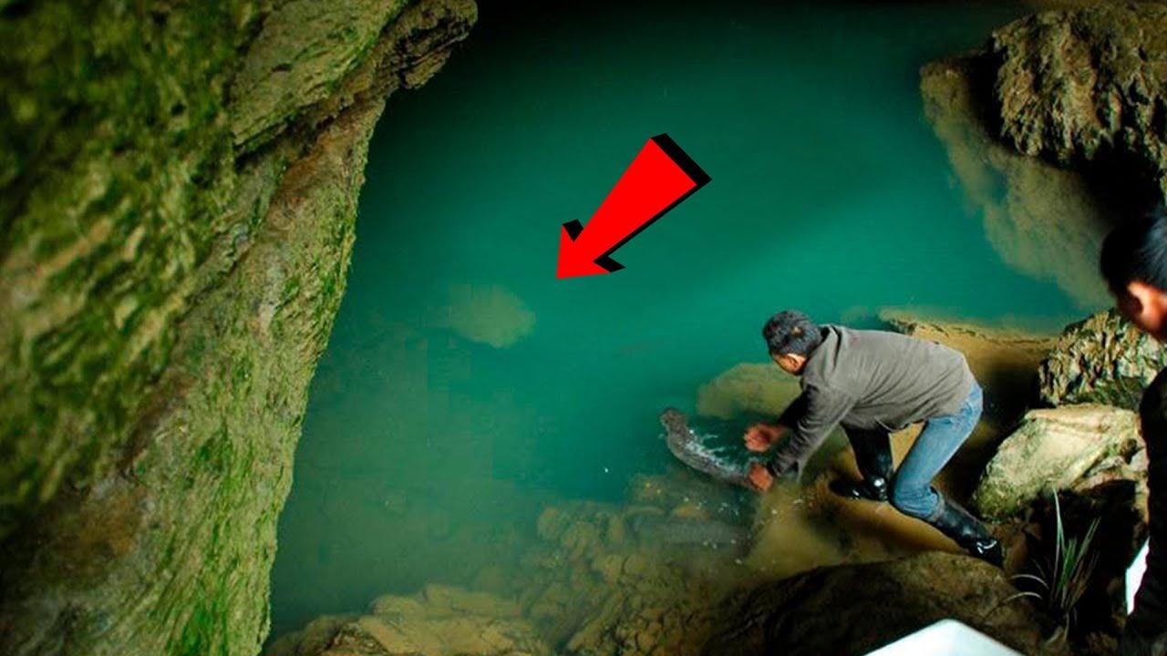 200 सालो से एक जीव इस गुफा में छुपा बैठा था | 200 Years Old Creature, Hiding for Years in a Cave