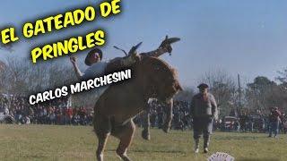 El Gateado de Pringles | Carlos Marchesini