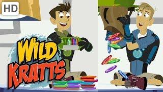 Wild Kratts 💥 All New Creature Adventures!   Kids Videos