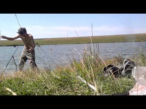 рыбалка в самарской области в чубовке