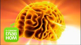 О самом главном: Препараты для  потенции, продукты-афродизиаки, стресс и зрение, синдром такоцубо