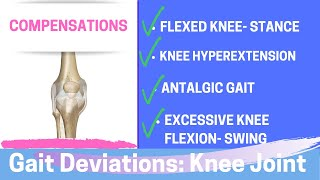 Gait Deviations: Compensatory Knee Joint Strategies