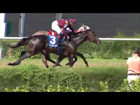 Gulfstream Park West Replay Show | November 11, 2017