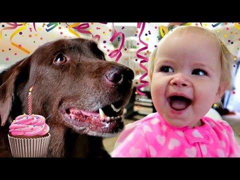 👶🏻1st BIRTHDAY DOG SURPRISE🎂