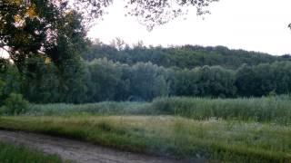 р.Тясмин, м. Чигирин, ранок(, 2014-06-29T20:24:52.000Z)