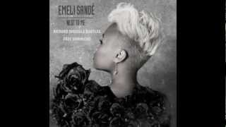 Emeli Sande - Next to Me (Richard Dinsdale Bootleg) FREE DOWNLOAD