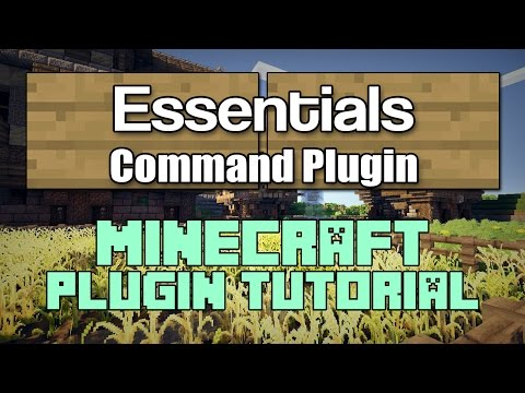 How to Use the Essentials Plugin