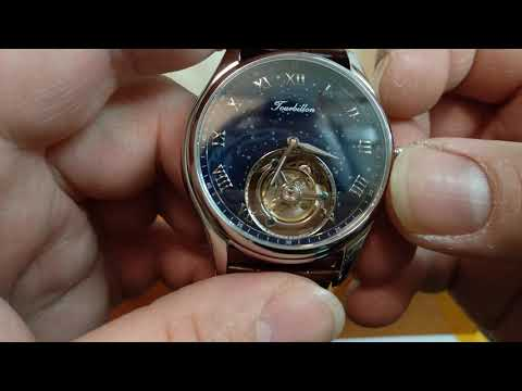 GUANQIN REAL TOURBILLION SEAGULL MECHANICAL SKELETONIZED MOVEMENT WATCH UNBOXING