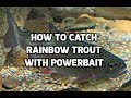 How To Catch Rainbow Trout with PowerBait