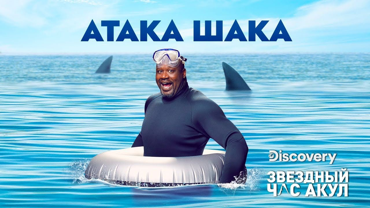 Акулы-охотники | Атака Шака | Discovery