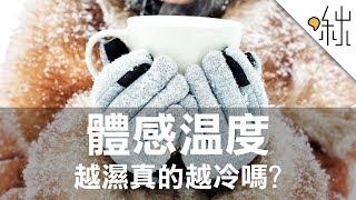 體感溫度是怎麼算出來的? 越濕真的越冷嗎? | 一探啾竟 第39集 | 啾啾鞋 thumbnail