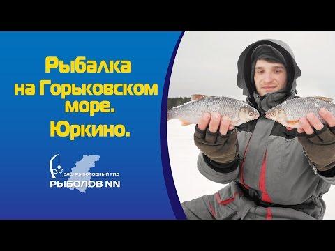 рыбалка в юркино нижегородской области