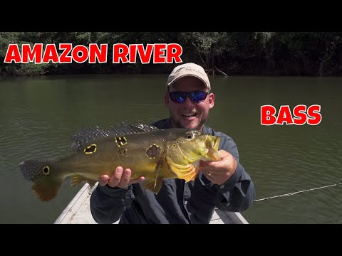 Amazon River Fly Fishing | Brazil