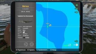 Fishing Planet ТРОФЕЙНЫЕ СОМЫ ПИЯВКИ ЗАНДЕР БАГЕР