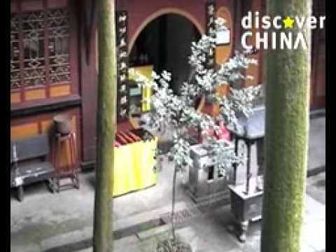 Discover China: Qingchengshan