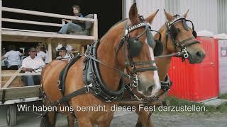 Préparation - Vorbereigung Marché-Concours Saignelégier 5