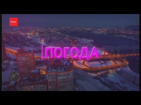 Погода от Ильи Сосновского