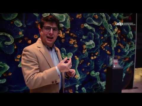"""""""El lenguaje como virus"""" de Rodrigo Rojas en la exposición """"Del virus a la epidemia"""""""