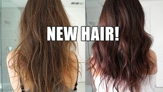 How I Colored My Hair!