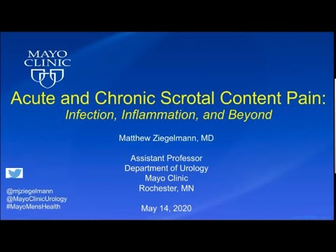 Download 5.14.2020 Urology COViD Didactics - Acute and Chronic Scrotal Content Pain