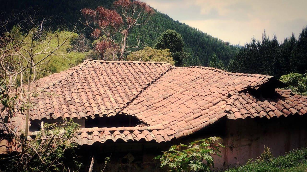 1878 tejado de casa campesina efectos paisajes for Tipos de tejados de casas