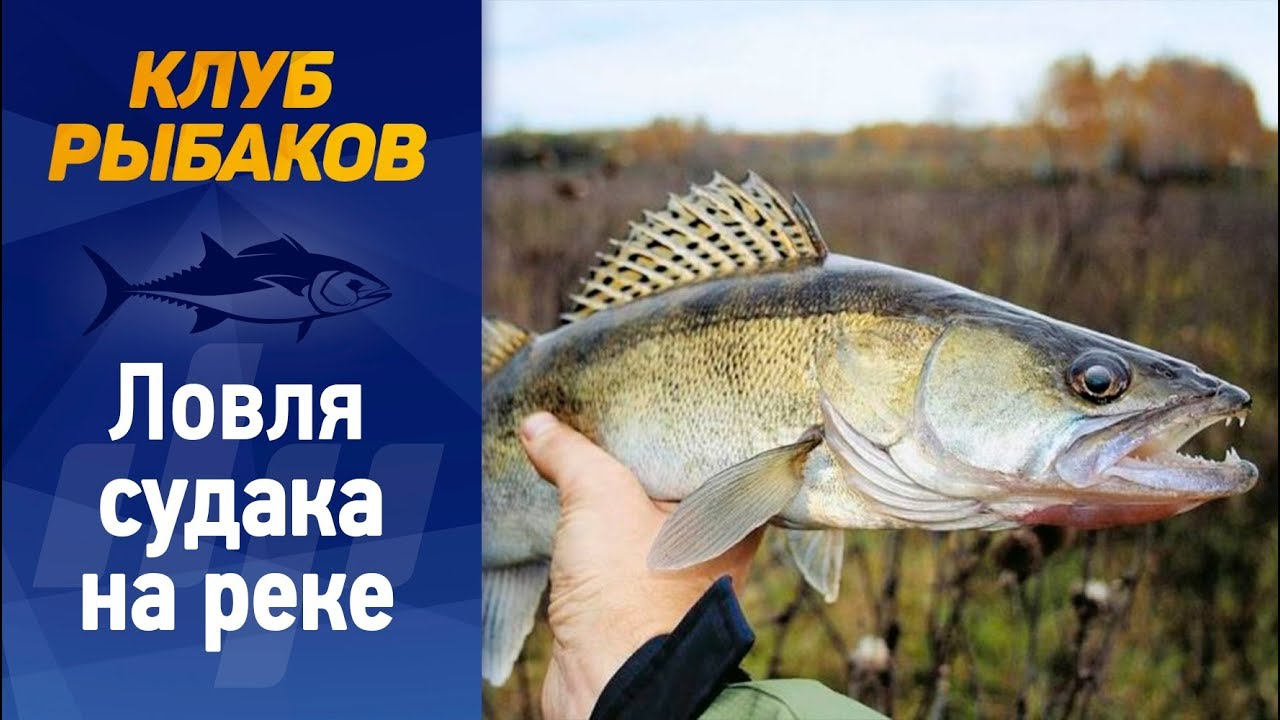 рыбалка река уень