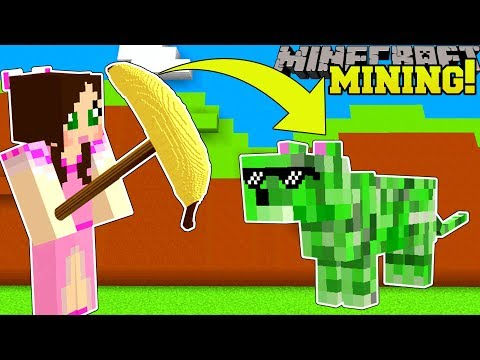 Minecraft: MINING SIMULATOR!!! (MINE DIAMONDS & GET EXTREME PETS!) Modded Mini-Game