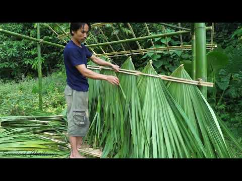 Primitive technology - Survival Challenge - The 6-month survival challenge in the jungle part 3