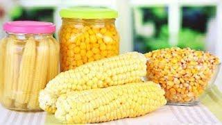 Как делают консервированную кукурузу