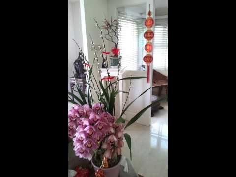 Chinese New Year 2014 home decoration