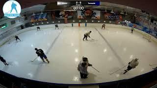 Шорт хоккей Мастер-Тур матч Молот - Торнадо