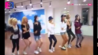 Lion Heart-SNSD Dance Mirror 소녀시대