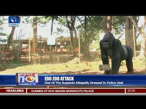 Edo Zoo Attack: Gunmen Kill 3 Policemen In Benin, Kidnap CEO
