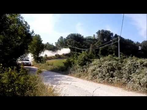 43° Rally San Marino CIR/TRT 2015 - Pure Sound