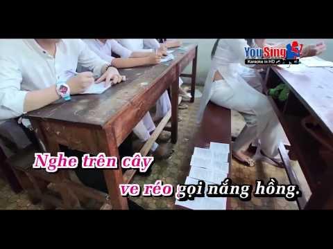 Karaoke Hai Canh Phuong Buon   Nhu Quynh & Tuong Nguyen 1