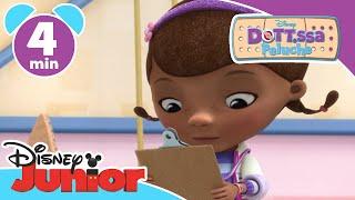 Dottoressa Peluche | Il pipistrello sonnacchioso - Disney Junior Italia